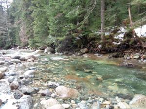River toward the beginning