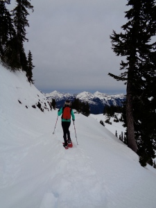 Heading back down, avy slope on the left, safety on the right...almost