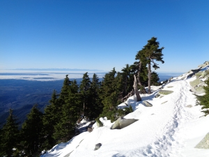 Trail along a talus slope just above the trees, inversion fog in the background