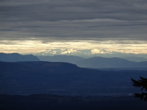 Base of Rainier