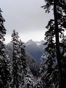 Sneak peek of views before cloud level dropped