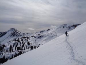 Surafel crossing hills