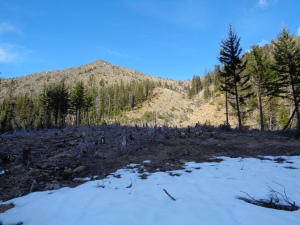 """after"" pic - no snow left on the lower peaks!"