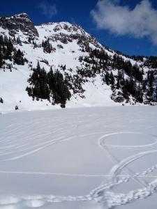 Ski and snowmobile tracks beneath Winchester