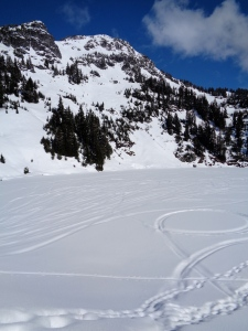 Ski and snowmobile tracks beneath Winchester