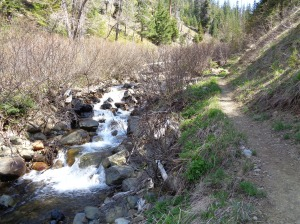 Trail next to Bean Creek
