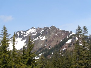 The west side of Alta's ridge. I made it to the point on the far right, true summit is on the left.