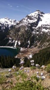 Wildflowers above Deep Lake